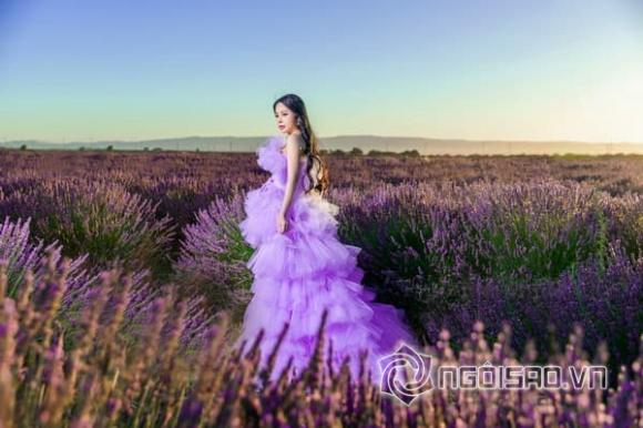 Hoa hậu người Việt thế giới tại Mỹ Hạ My, sao việt