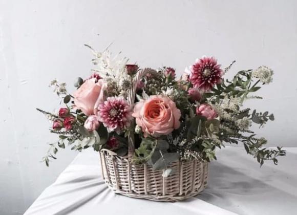 trắc nghiệm, đố vui, lãng hoa