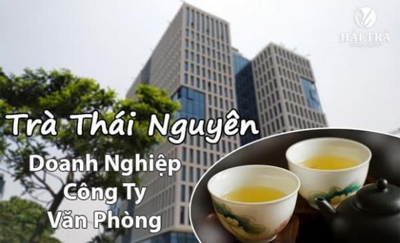 Trà Thái Nguyên, Trà Tân cương, Hải Trà Tân Cương