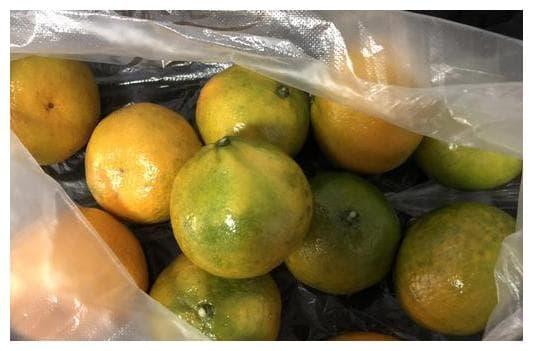 mẹo hay, kinh nghiệm đi chợ, chọn cam, chọn quýt, mẹo chọn hoa quả