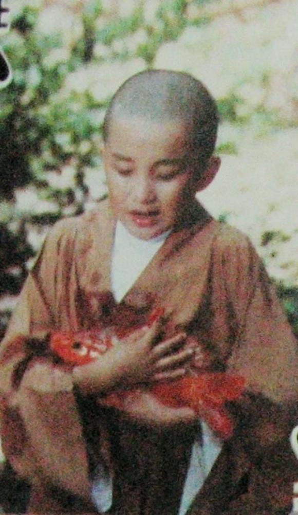 Thái Viễn Hàng, Tôn Thiến, sao Hoa ngữ