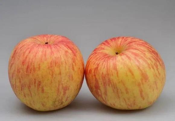 trái cây, trái cây gây hại,