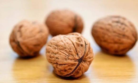 quả óc cho, bổ não, thực phẩm tốt cho não