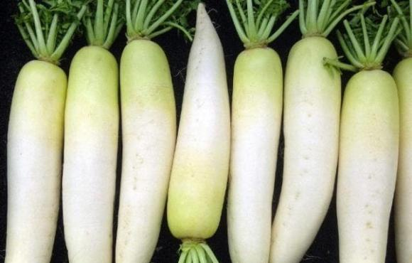 củ cải, củ cải trắng, muối củ cải, dạy nấu ăn