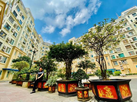 Quang Tèo, vườn nhà Quang Tèo, nhà sao việt