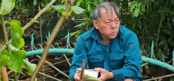mưa lũ, thiên tai, Quảng Bình, miền Trung