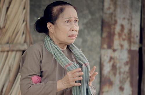 nghệ sĩ Ánh Hoa qua đời, nghệ sĩ Ánh Hoa, sao Việt