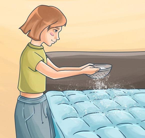 mùi hôi trong nhà, cách loại bỏ mùi hôi trong nhà, kiến thức