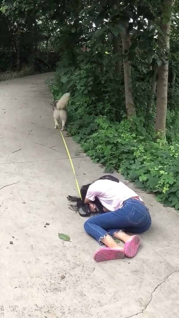 câu chuyện hài hước, thử lòng thú cưng, nuôi thú cưng