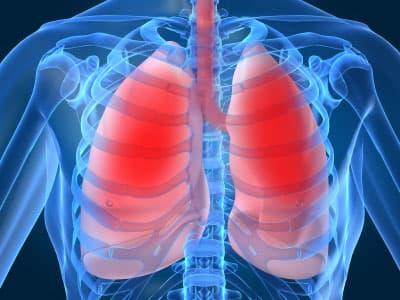 phổi, tốt cho phổi