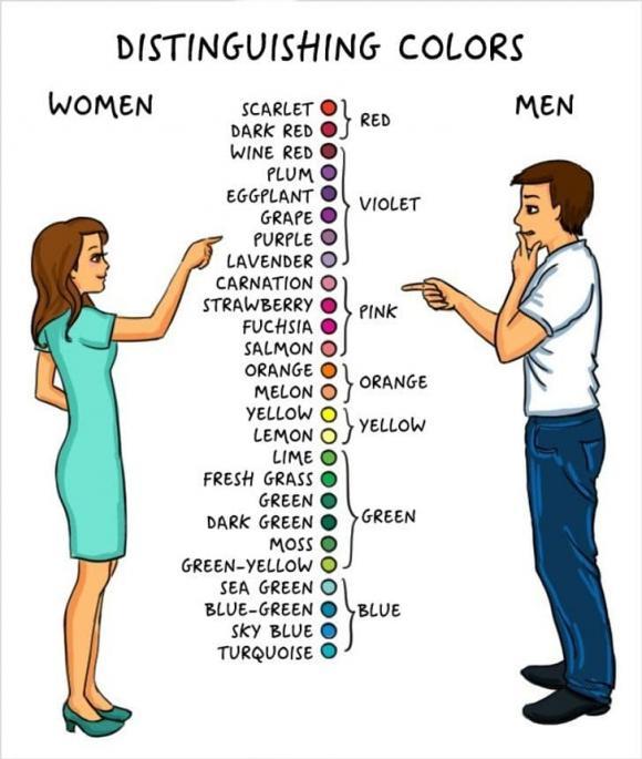 nam giới, cơ thể nam giới, kiến thức