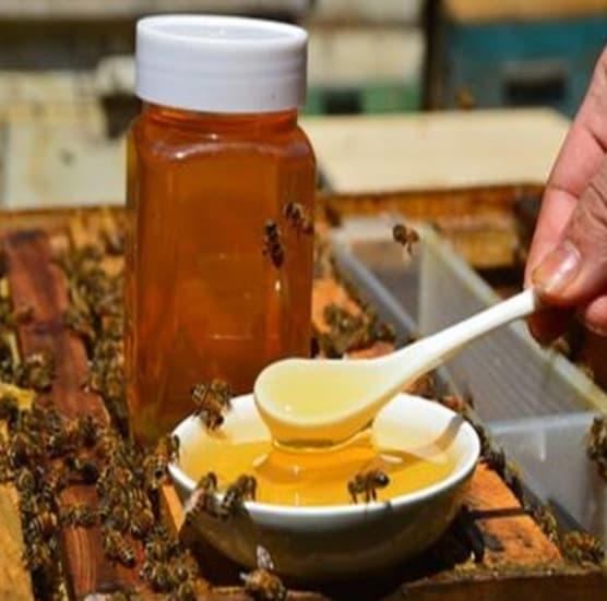mật ong, sức khỏe