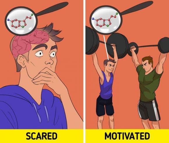 sợ hãi, lợi ích của sợ hãi, kiến thức