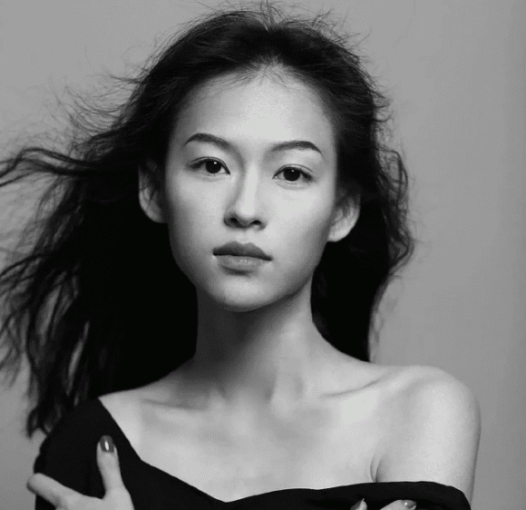 Mẫu nữ Việt được báo Trung khen giống Chương Tử Di, Chương Tử Di, sao Hoa ngữ