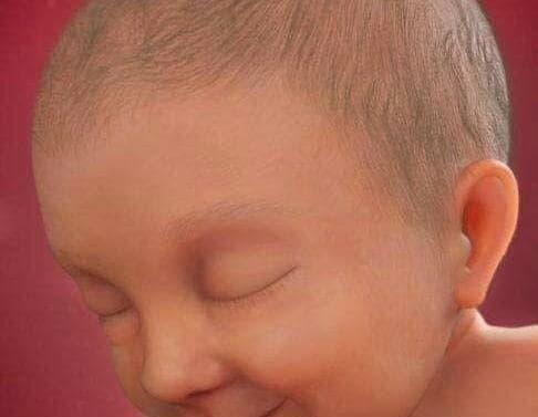 mọc tóc, bà bầu, mang thai, dinh dưỡng bà bầu
