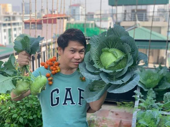 Trọng Tấn, Trọng Tấn trồng rau, sao việt