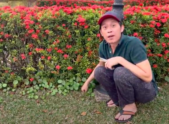 NSƯT Hoài Linh, sao Việt