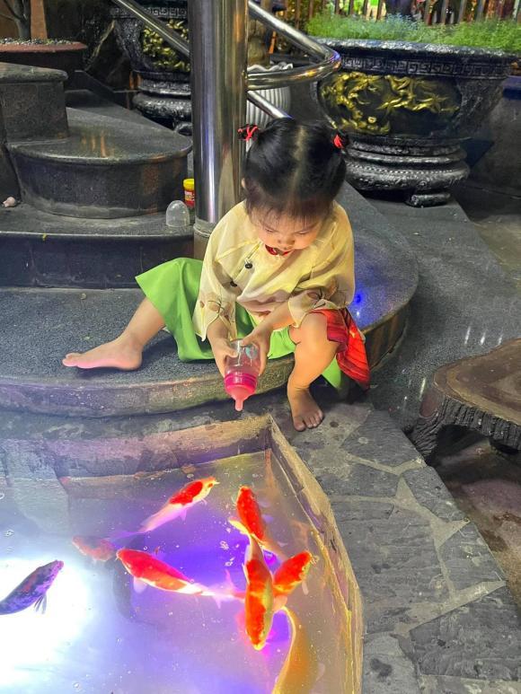 Thanh Thảo, ca sĩ Ngọc Sơn, sao Việt