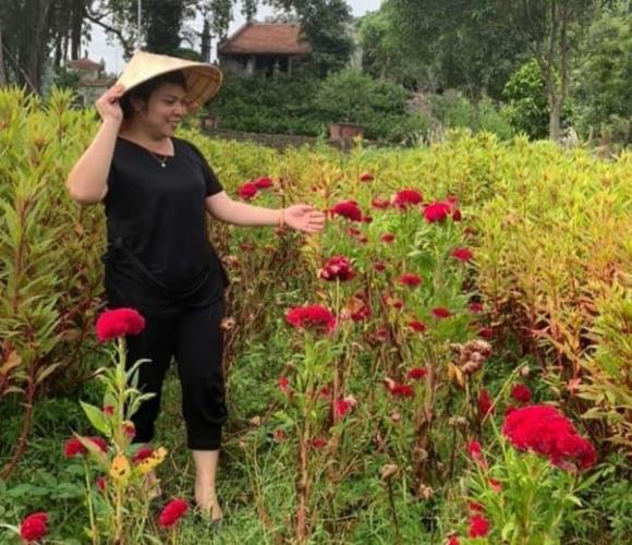 Nguyễn Thị Thêm, Thảo dược Việt, Thảo dược gia truyền Bà Thông
