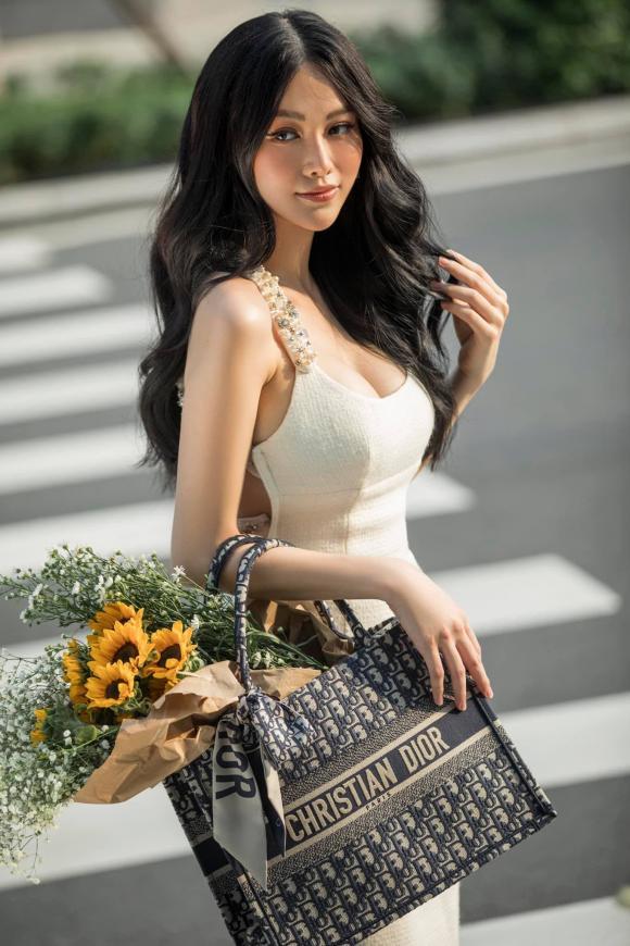 Hoa hậu Trái đất Phương Khánh, Phương Khánh, Tăng Thanh Hà, sao Việt