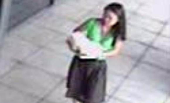 sát hại nữ sinh gốc Việt, vụ án chấn động, Annie Marie Le