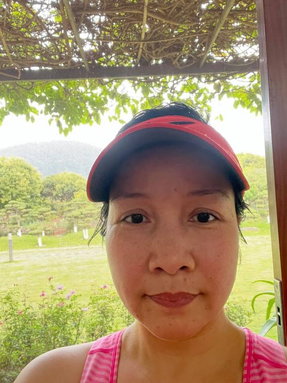 Mỹ Linh, cuộc sống của Mỹ Linh, sao Việt