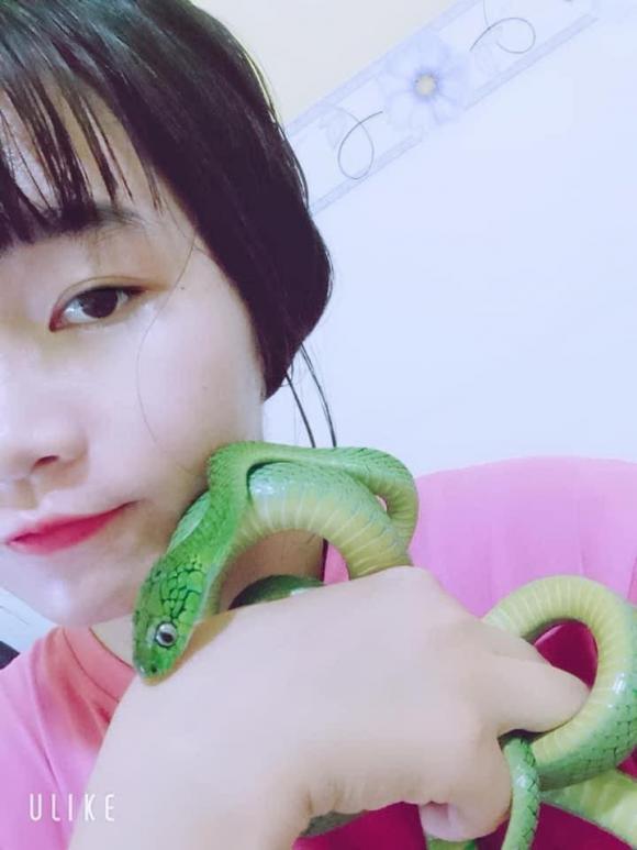 nuôi rắn làm thú cưng, con rắn, nuôi rắn