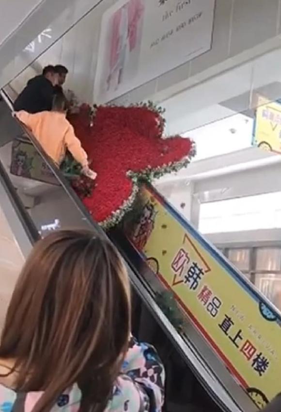 tỏ tình thất bại, chàng trai làm trái tim 1314 bông hồng