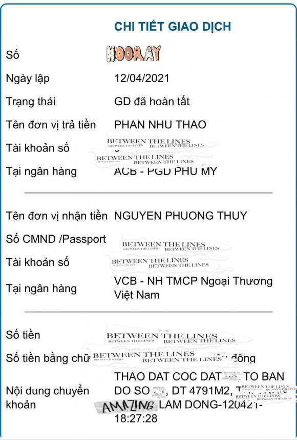 Người mẫu Phan Như Thảo, sao Việt