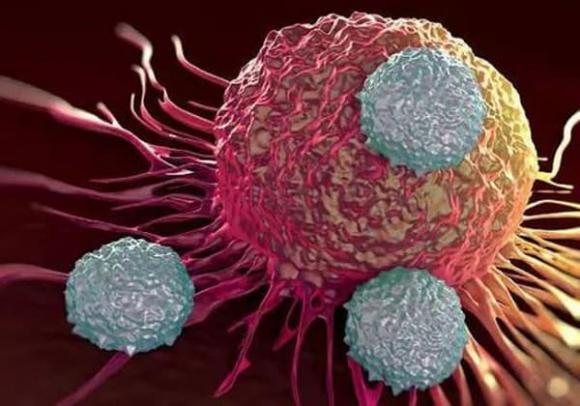 ung thư, tuổi thọ, để tăng tuổi thọ