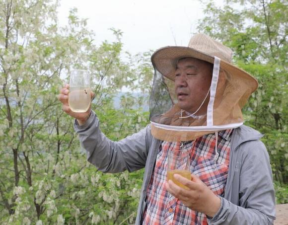 mật ong, ăn mật ong thế nào tốt