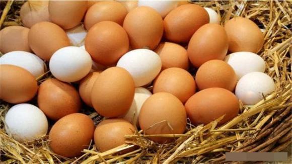 trứng, ăn trứng, lợi ích của trứng