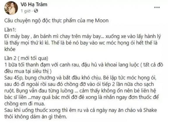 ca sĩ Võ Hạ Trâm, sao Việt