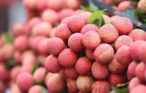 Cách chọn vải ngon, bí quyết, hoa quả sạch