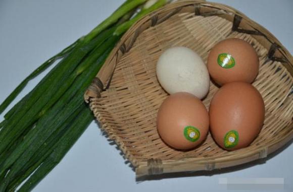 món trứng, dạy nấu ăn, trứng rán