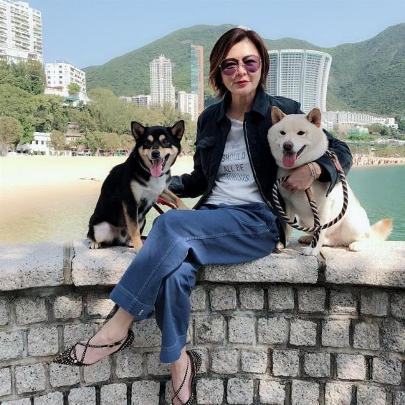 Quan Chi Lâm, sao Hồng Kông, mỹ nhân TVB