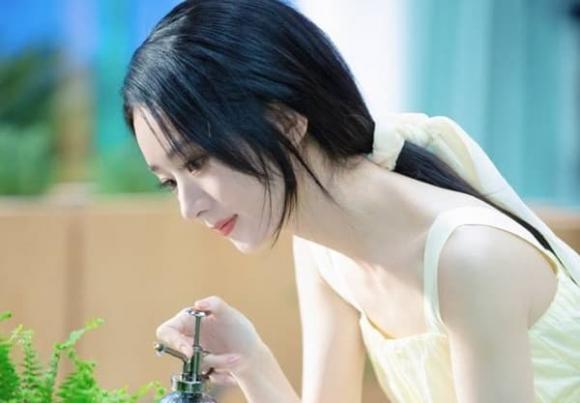 Triệu Lệ Dĩnh, Phùng Thiệu Phong, sao Hoa ngữ