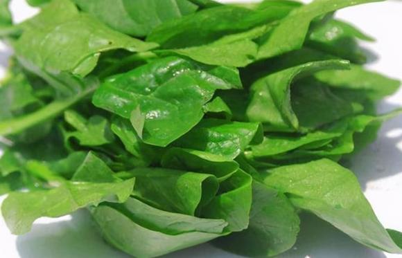 rau xanh, sức khỏe trung niên, tốt cho máu, mùng tơi, quả sung, rau muống