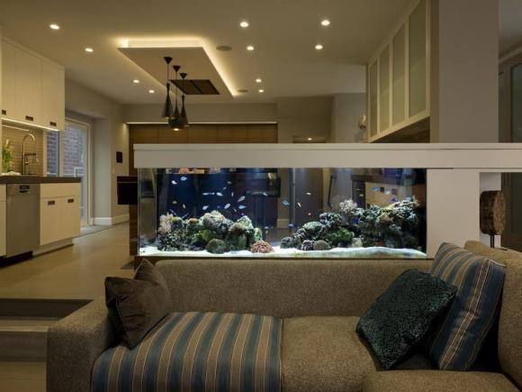 Phong thủy, bể cá, đặt bể cá đúng phong thủy