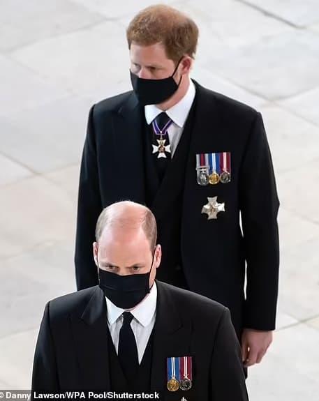 harry meghan, hoàng tử william, harry william