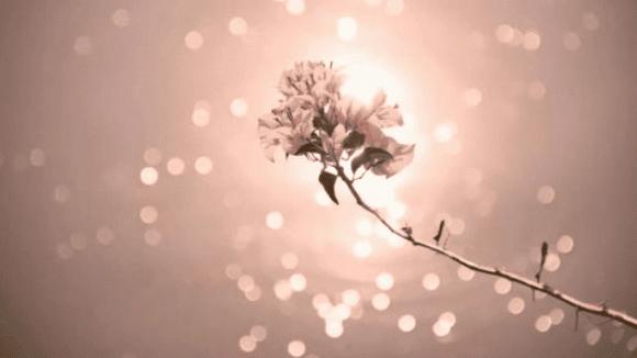cuộc đời, những điều cần biết trong đời, những điều con người nên nhìn thấu trong đời