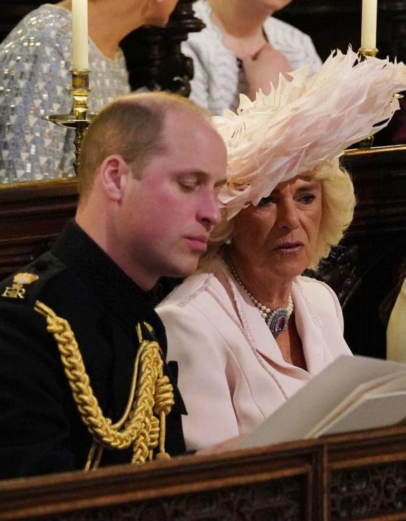 hoàng tử william, bà camilla, thái tử charles