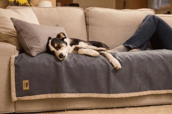 Thế giới sofa, sofa nhập khẩu