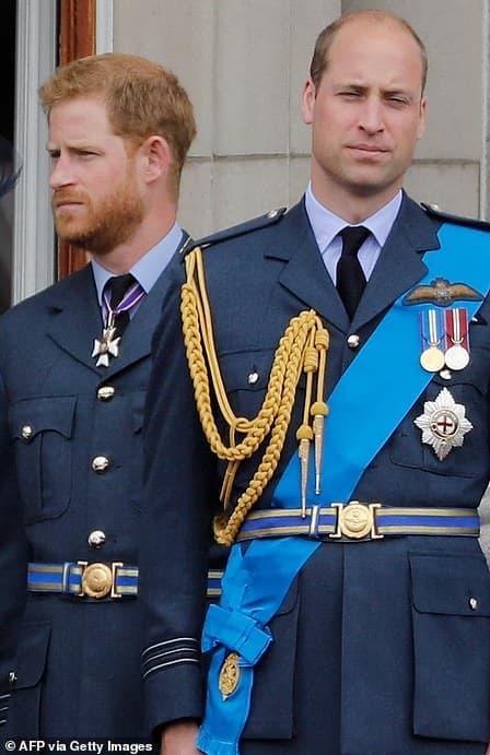 harry meghan, thái tử charles, hoàng tử william