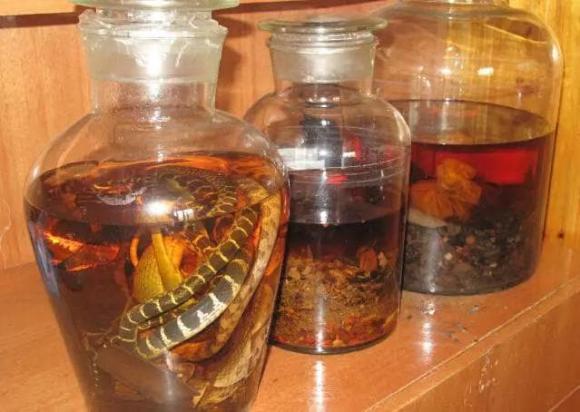 rượu thuốc, ngâm rắn, rắn cắn, tại sao rắn vẫn sống trong bình rượu ngâm