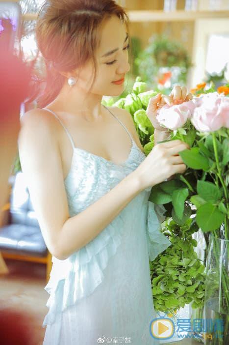 nhiếp viễn, lên nhầm kiệu hoa được chồng như ý, diên hi công lược