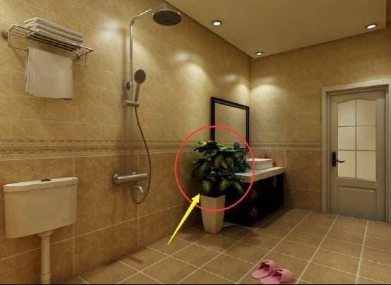 phong tắm, cấm kị, sức khỏe, cách sắp xếp nhà