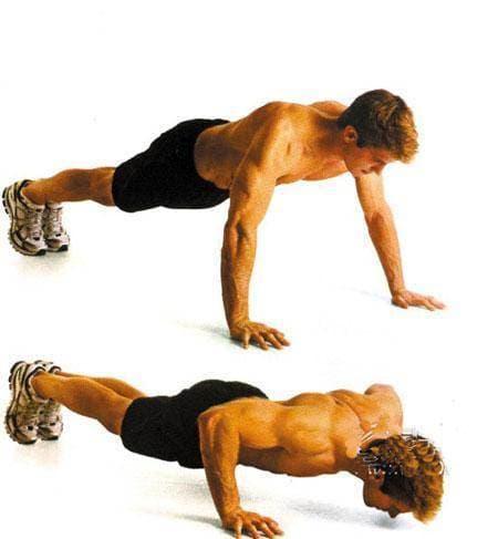 chống đẩy, bài tập chống đẩy, thể dục, thể dục tại nhà