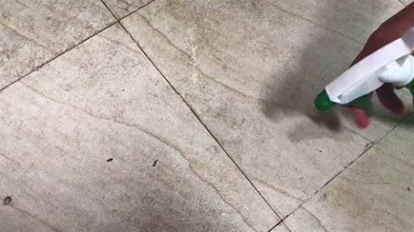 làm sạch, vệ sinh, sàn gạch, mẹo hay