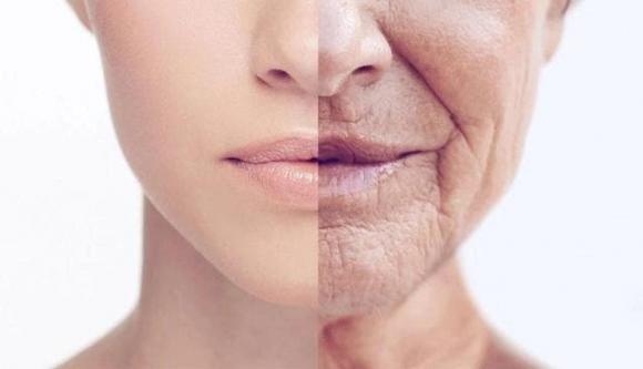 lão hóa, chăm sóc da, thói quen xấu, collagen